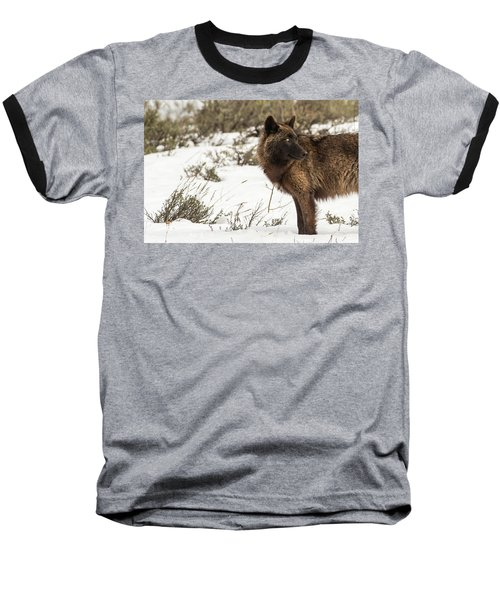 W6 Baseball T-Shirt