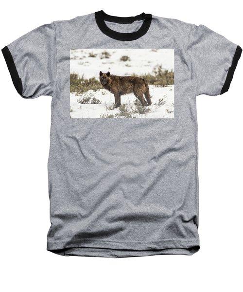 W8 Baseball T-Shirt