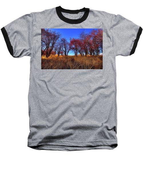 Baseball T-Shirt featuring the photograph Autumn Light by David Patterson