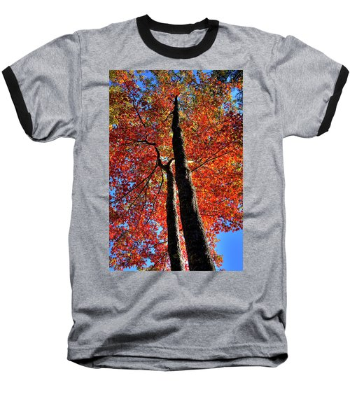 Baseball T-Shirt featuring the photograph Autumn Reds by David Patterson