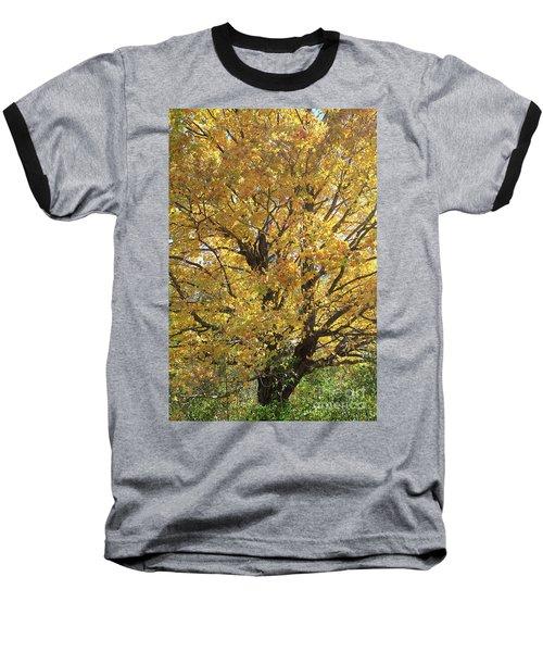 2018 Edna's Tree Up Close Baseball T-Shirt
