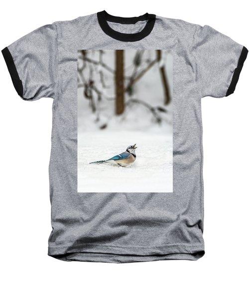 2019 First Snow Fall Baseball T-Shirt