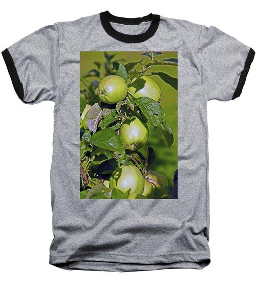 21/07/14  Chorley.  Astley Hall. Baseball T-Shirt