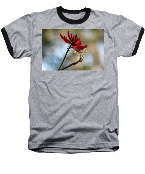 Coral Tree Flowers Baseball T-Shirt