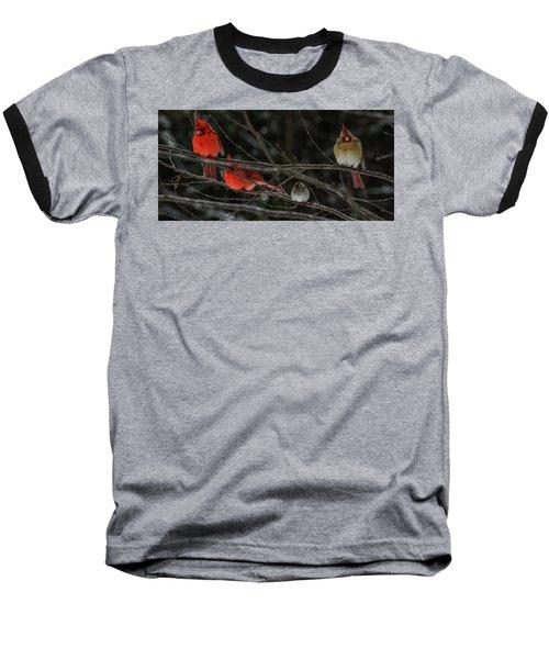 3cardinals And A Sparrow Baseball T-Shirt