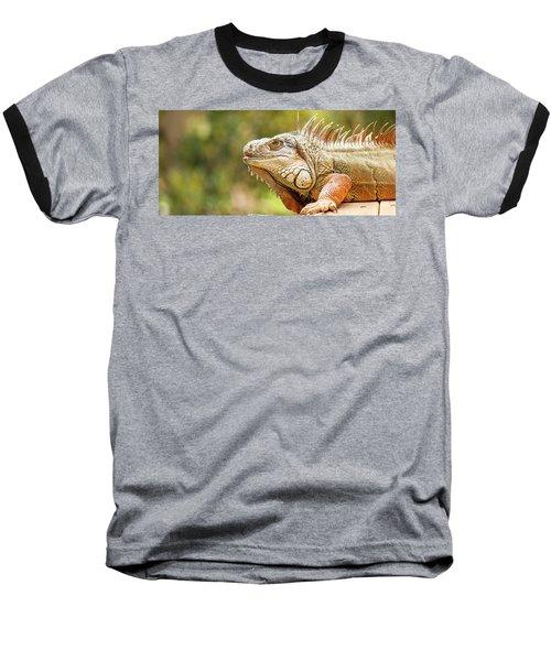 Green Iguana Baseball T-Shirt