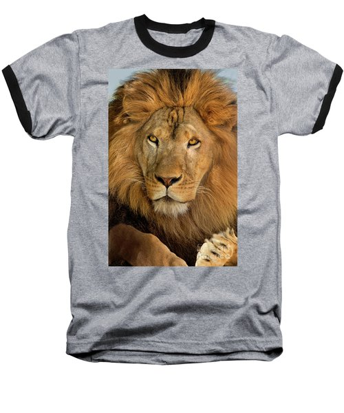 Baseball T-Shirt featuring the photograph 656250006 African Lion Panthera Leo Wildlife Rescue by Dave Welling