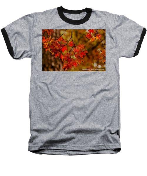 A Branch Of Autumn Baseball T-Shirt