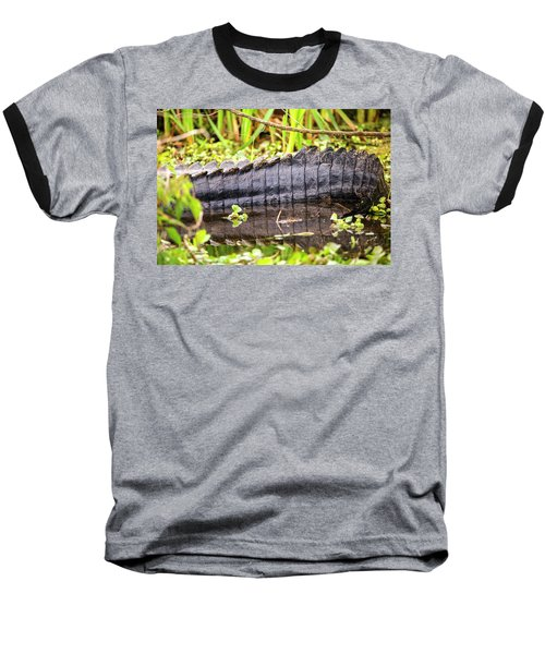 A Dinosaur Tale Baseball T-Shirt