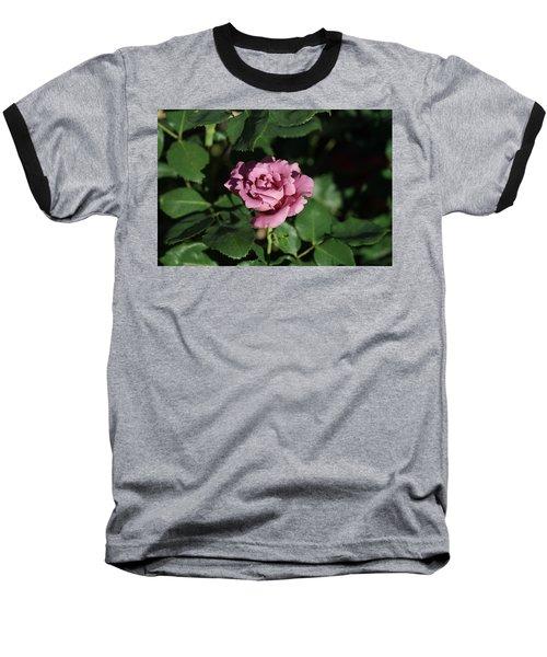 A New Rose Baseball T-Shirt