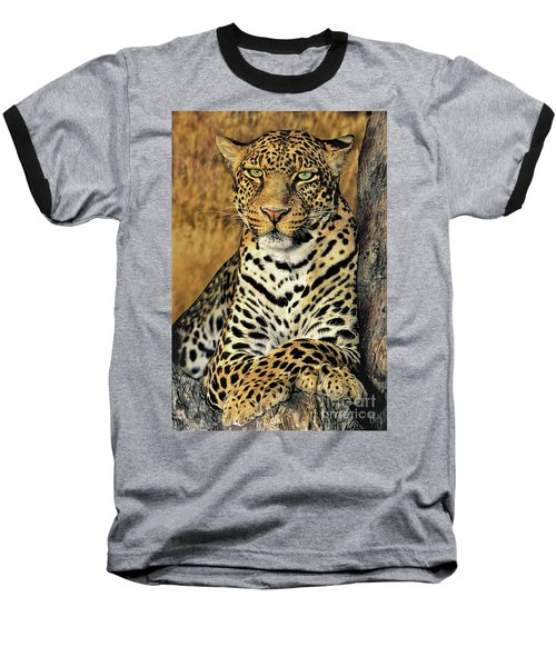Baseball T-Shirt featuring the photograph African Leopard Portrait Wildlife Rescue by Dave Welling
