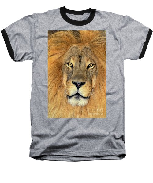 Baseball T-Shirt featuring the photograph African Lion Portrait Wildlife Rescue by Dave Welling