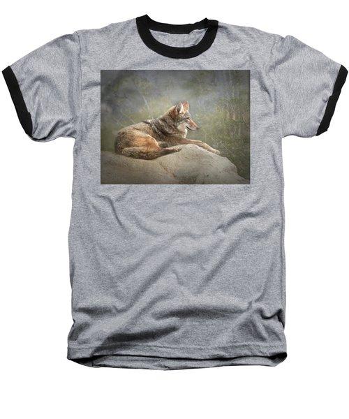 Afternoon Repose Baseball T-Shirt