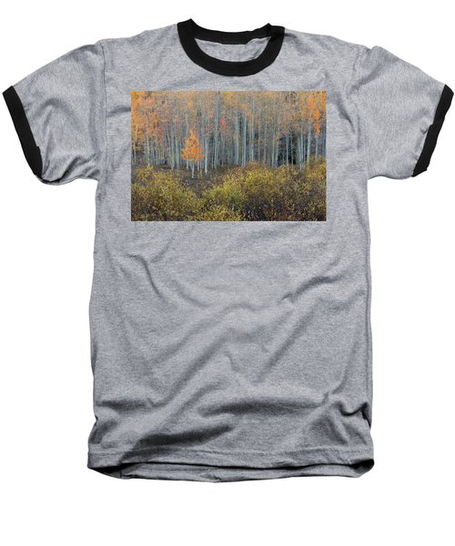 Alone In The Crowd Baseball T-Shirt