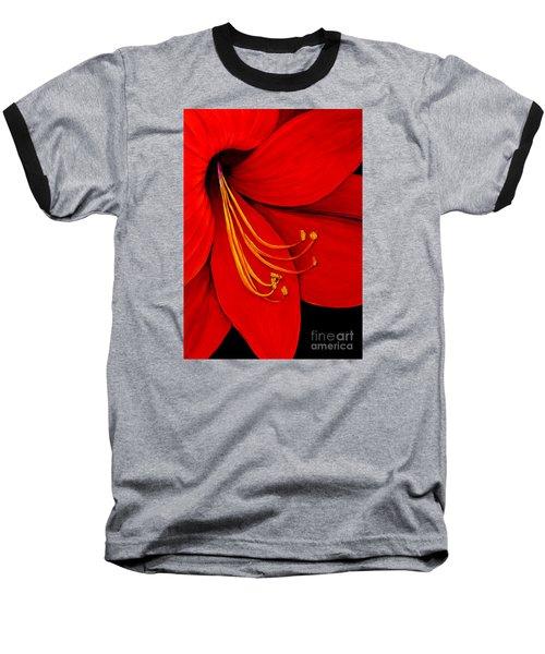 Amaryllis 2 Baseball T-Shirt
