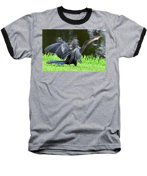 Anhinga Surprise Baseball T-Shirt