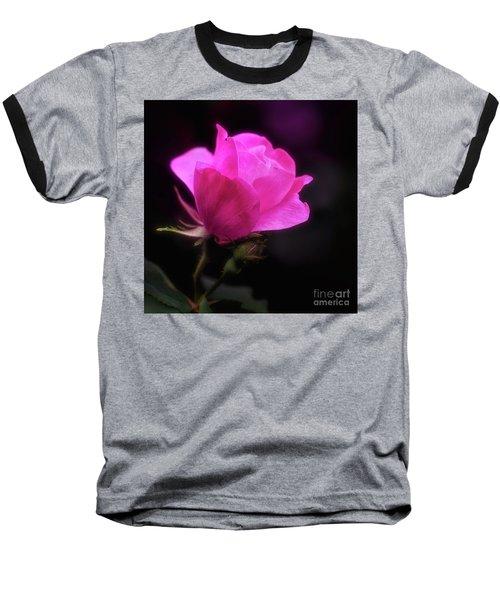 Anniversary Rose Baseball T-Shirt