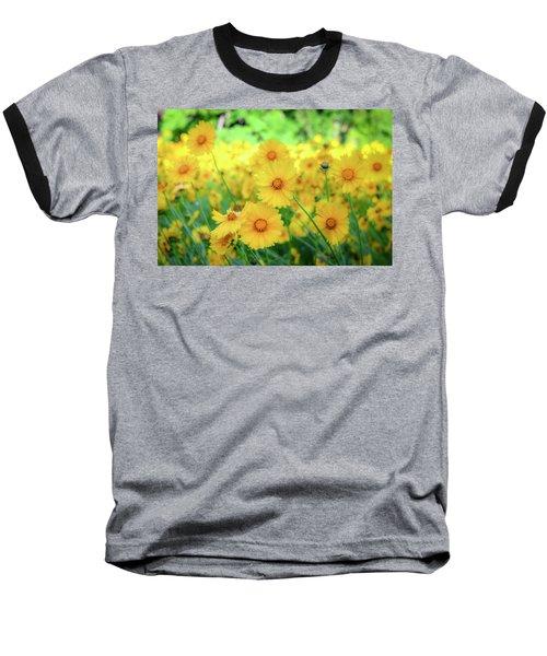 Another Glimpse, Pollinator Field Baseball T-Shirt