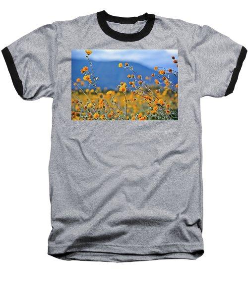 Anza Borrego Wild Desert Sunflowers Baseball T-Shirt