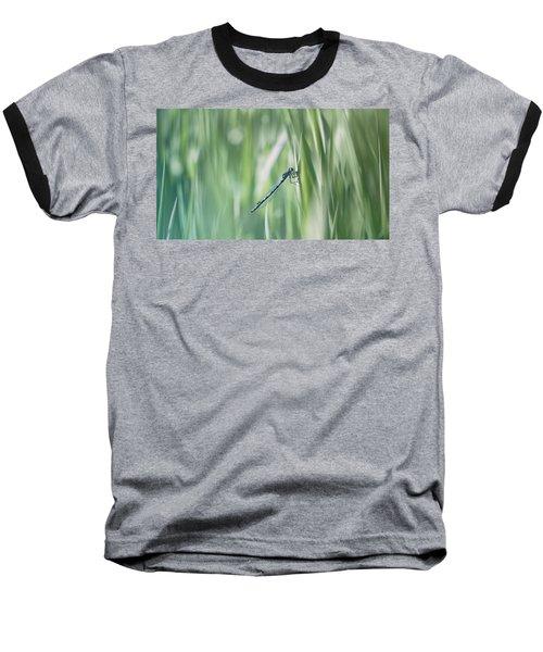 Around The Meadow 8 Baseball T-Shirt