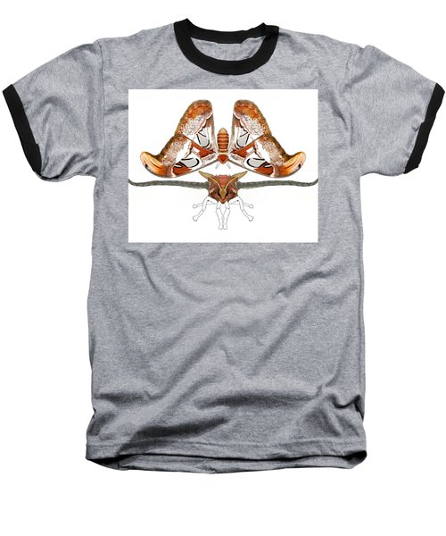Atlas Moth3 Baseball T-Shirt