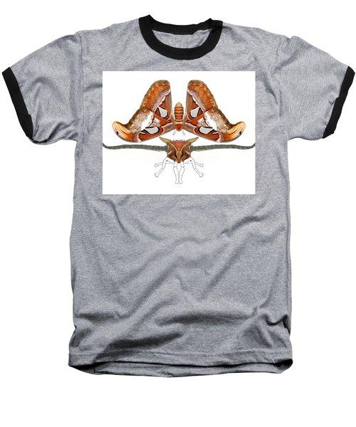 Atlas Moth4 Baseball T-Shirt