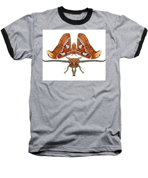 Atlas Moth5 Baseball T-Shirt