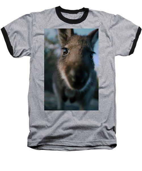 Australian Bush Wallaby Outside During The Day. Baseball T-Shirt