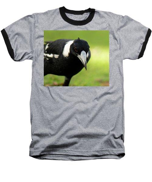 Australian Magpie Outdoors Baseball T-Shirt