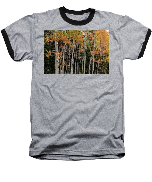 Baseball T-Shirt featuring the photograph Autumn As The Seasons Change by James BO Insogna