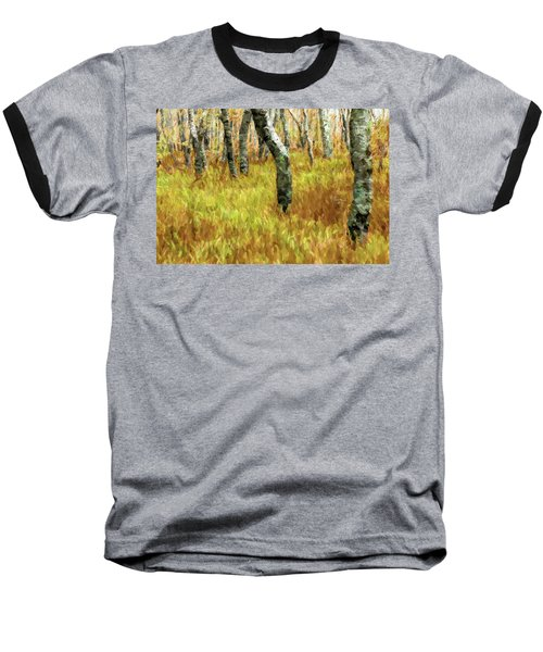 Autumn At Craggy Gardens Ap Baseball T-Shirt