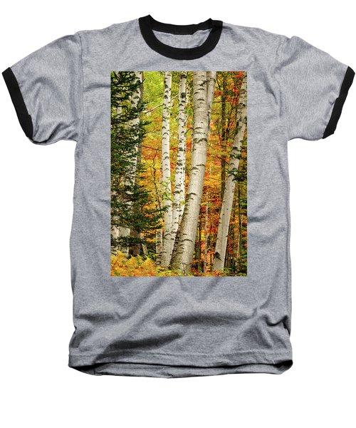 Autumn Birch Baseball T-Shirt