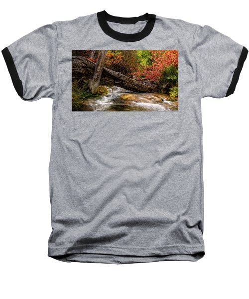 Autumn Dogwoods Baseball T-Shirt