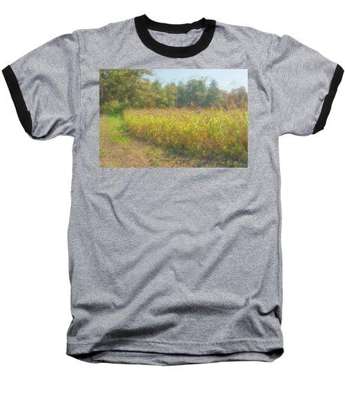 Autumn Field In Sunlight Baseball T-Shirt
