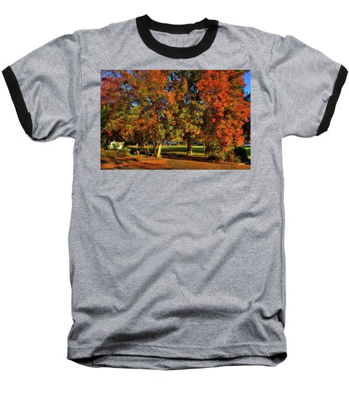 Baseball T-Shirt featuring the photograph Autumn In Reaney Park by David Patterson