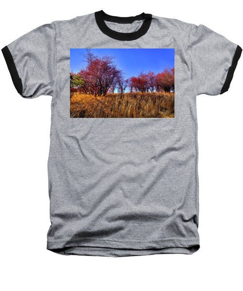 Baseball T-Shirt featuring the photograph Autumn Sun by David Patterson