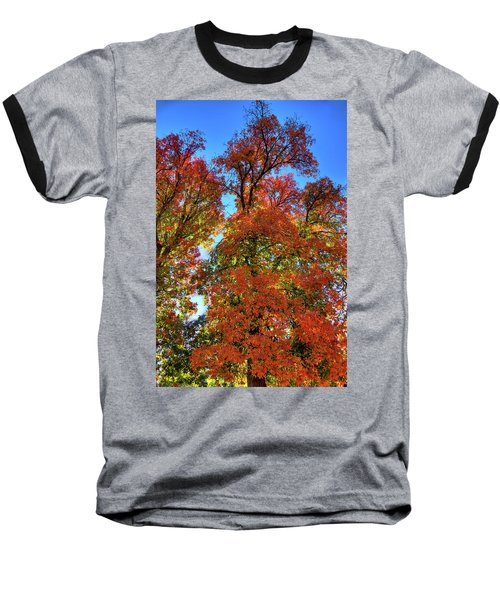 Baseball T-Shirt featuring the photograph Backlit Autumn by David Patterson