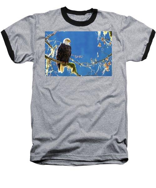 Backlit Bald Eagle In Squamish Baseball T-Shirt