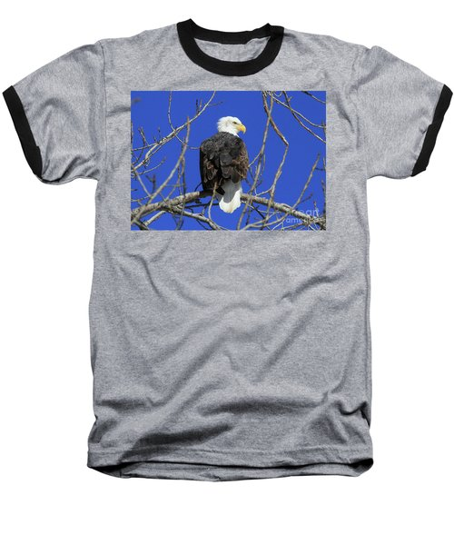 Bald Eagle And Blue Sky Baseball T-Shirt