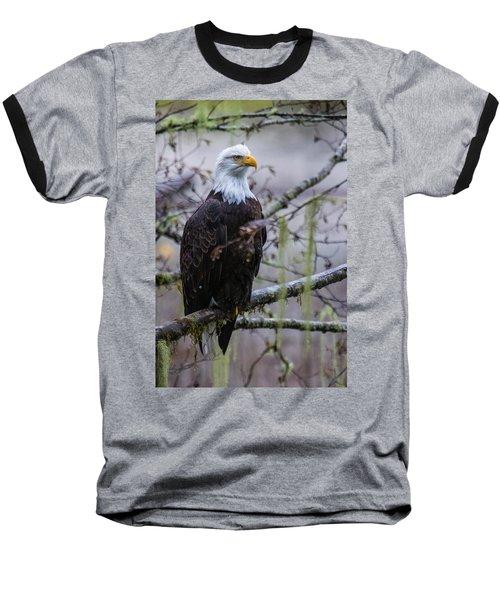 Bald Eagle In Rain Forest Baseball T-Shirt
