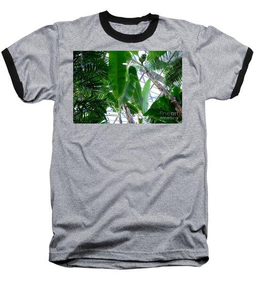 Banana Leaves In The Greenhouse Baseball T-Shirt