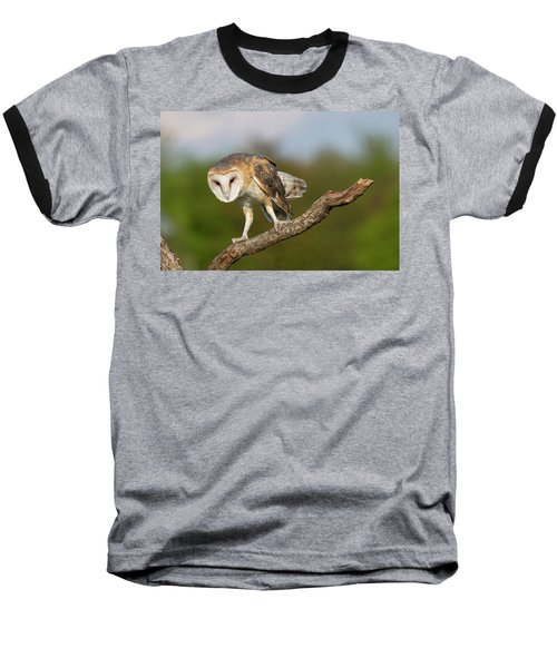 Barn Owl 5151801 Baseball T-Shirt