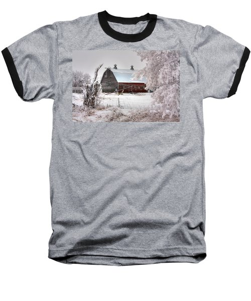 Barney Baseball T-Shirt