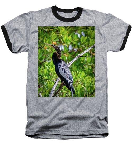 Beautiful Anhinga Baseball T-Shirt