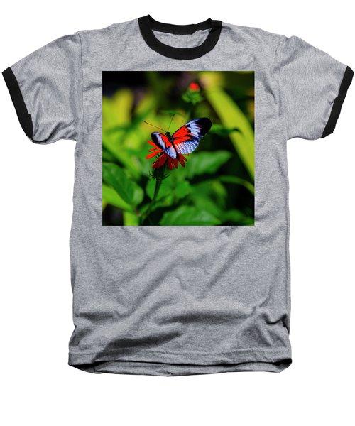Beautiful Butterfly Baseball T-Shirt