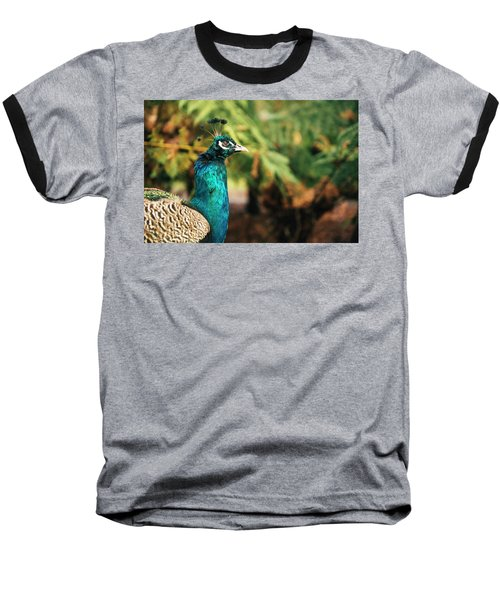 Beautiful Colourful Peacock Outdoors In The Daytime. Baseball T-Shirt