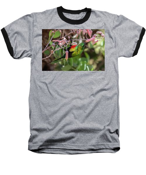 Beautiful Sunbird Baseball T-Shirt