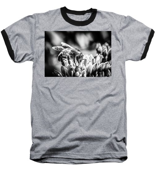 Bee Bee Baseball T-Shirt