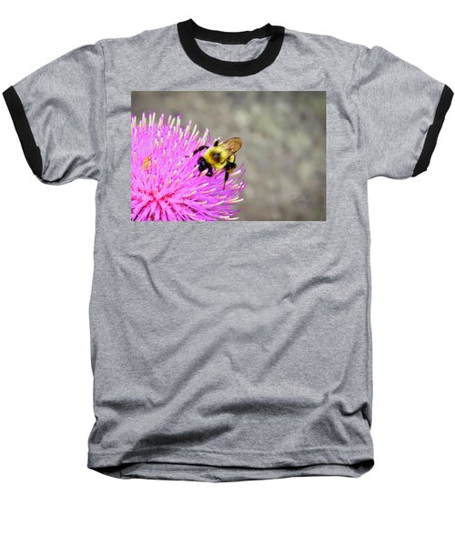 Bee On Pink Bull Thistle Baseball T-Shirt