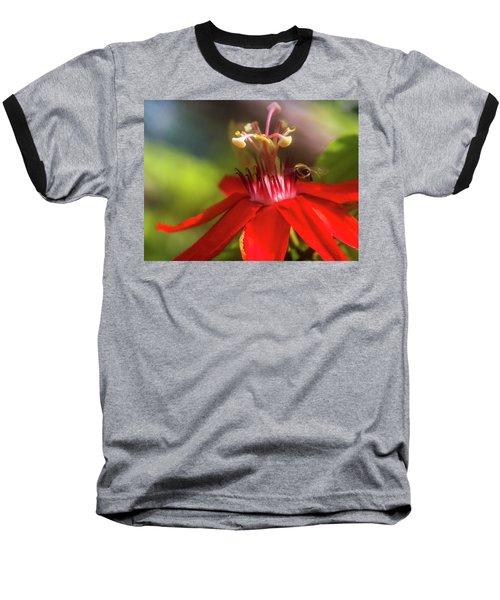 Beeline Movement Baseball T-Shirt